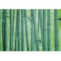 Пленка самоклеющаяся D&В 0,45*8м бамбук зеленый/20